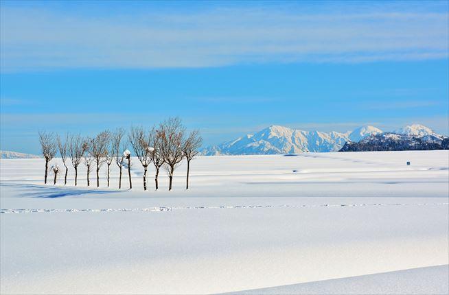 美しい雪国の景色